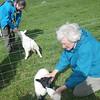 Harris, Luskyntyre, Phyllis feeding Emily, Diane feeding Ethel